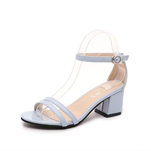 Ouneed® Flip Flops Damen Erwachsene Zehentrenner , Sommer flachen Flip Flops Sandalen Slipper Böhmen Schuhe 2016 (38, Schwarz)