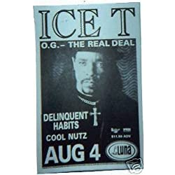 Ice T Body Count Rare Original 1995 Portland Rap Hip-hop Concert Tour Gig Poster