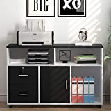 Home and Office Printer - File Cabinet, LITTLE TREE 2 Drawer Storage Printer Stand, Mobile Lateral Filing Cabinet with Wheels, Open Storage Shelves for Study, Home Office