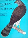 img - for American Bird Engravings book / textbook / text book