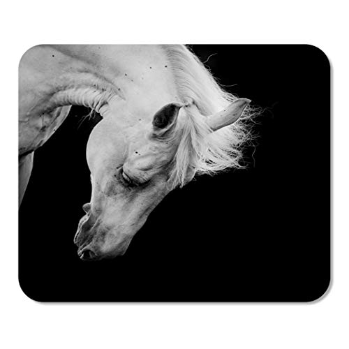 Suike Mousepad Computer Notepad Office Head White Horse on Black Detail Equestrian Hair Melancholy Home School Game Player Computer Worker 9.5x7.9 -
