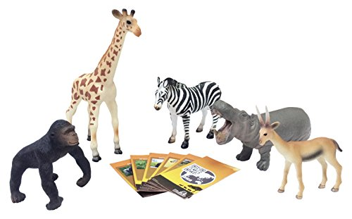 Set 2 Collector Card (Nature Bound Jungle Safari Animals Series 2 Large Set with Collector Cards)