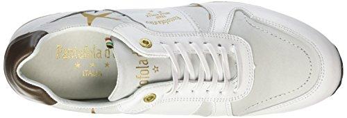 d'Oro Stelle Donne 1fg Pantofola Bianco Bright Teramo Sneaker White Low Donna xP1P6qw