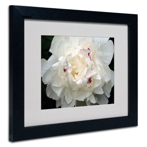 (Kurt Shaffer Perfect Peony Framed Matted Canvas Art, 11 by 14-Inch, Black)