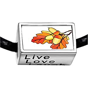 Chicforest Silver Plated Autumn Fall Acorn Leaves Photo Live Love Laugh Charm Beads Fits Pandora Bracelet