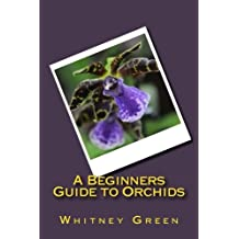 A Beginners Guide to Orchids