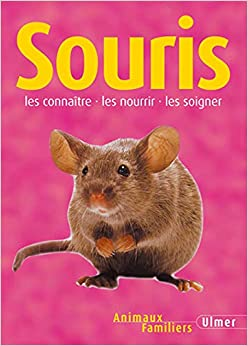 Book's Cover of Souris (Français) Broché – 25 novembre 2003