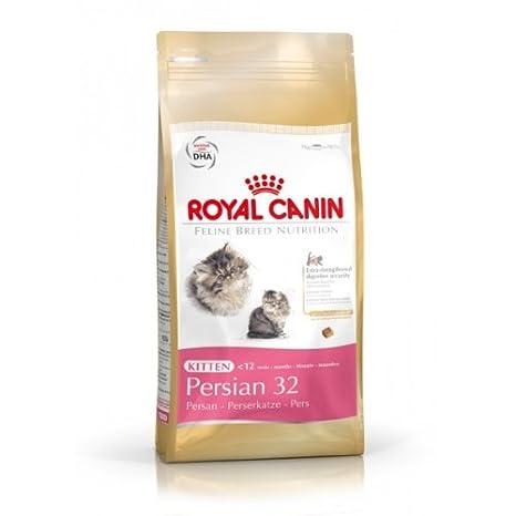 Royal canin Persian pienso para gatitos de raza persa ...