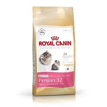 Royal canin Persian pienso para gatitos de raza persa: Amazon.es: Productos para mascotas