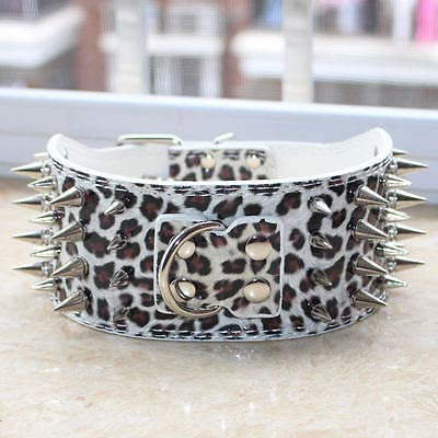 FidgetGear Spiked Studded Dog Collars 3inch Wide bluee Leather Dog Collars Pitbull Terrier White Leopard X-Large