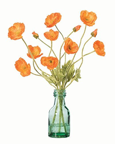 California Poppies Silk Accent - (Poppy Arrangement)