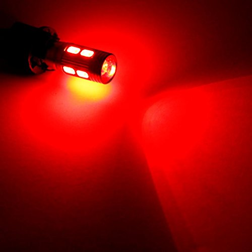 10 000 hour lightbulbs - 7