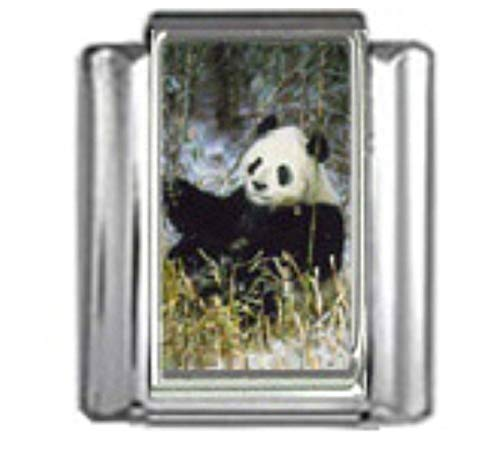 Stylysh Charms Panda Bear Animal Photo Italian 9mm Link AN055