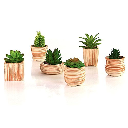 Sun e 6in set 3 inch ceramic wooden pattern succulent for Wooden cactus planter