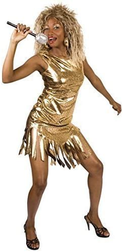 Fancy Me Mujer Estrella Pop Famoso Celebrity Dorado Tina Turner ...