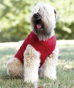 Doggie Skins 5.0 Oz. 100% Combed Ringspun Cotton 1x1 Rib Doggie Tank, Red, XL