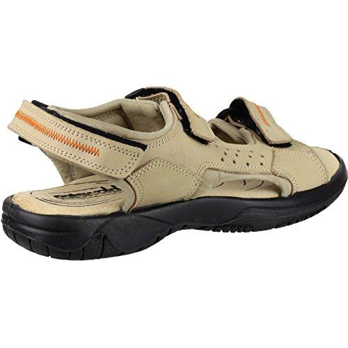 Cotswold Cowley Zapato Verano Damas Damas Zapatos Sandalia De Cuero De Verano Cream
