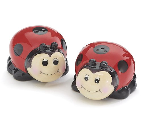 Whimsical Ladybug Lady Bug Salt and Pepper Shaker Set for Kitchen Decor -