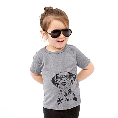 Inkopious Spot The Dalmatian Toddler Unisex Boy Girl Kids Crewneck 2T Grey ()