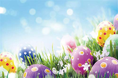 Laeacco 10x7ft Colorful Painted Easter Eggs Grassland White Flowers Faint Bokeh Haloes Backdrops Child Adult Portraits Shoot Community Easter Egg Hunts Photo Props Greeting Card