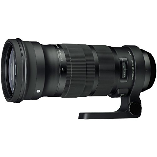 Sigma 120-300mm F2.8 Sports DG APO OS HSM