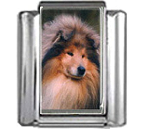 Collie Dog Photo Charm - Stylysh Charms Collie Dog Photo Italian 9mm Link DG165