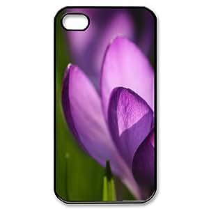 For Apple Iphone 5C Case Cover crocus Design For Men, For Apple Iphone 5C Case Cover Luxury For Man Stevebrown5v, [Black]