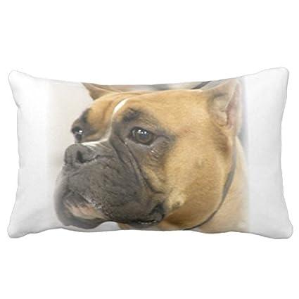 Boxer de cara de perro almohada 20In * 30-in-2 funda para cojín