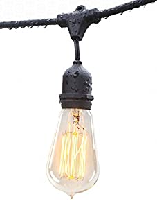 Amazon Com Deneve Outdoor String Lights 48ft With
