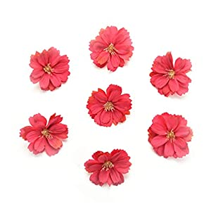 Fake flower heads in bulk wholesale for Crafts Artificial Silk Flowers Head Peony Daisy Decor DIY Flower Decoration for Home Wedding Party Car Corsage Decoration Fake Flowers 50PCS 4cm (Rose red)