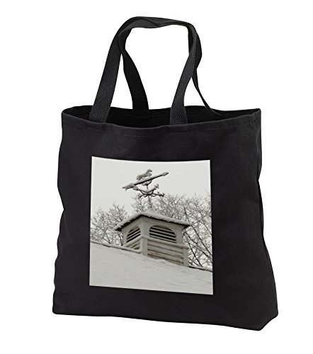 TDSwhite - Winter Seasonal Nature Photos - Rooftop Weathervane Winter Scene - Tote Bags - Black Tote Bag 14w x 14h x 3d (tb_284882_1)