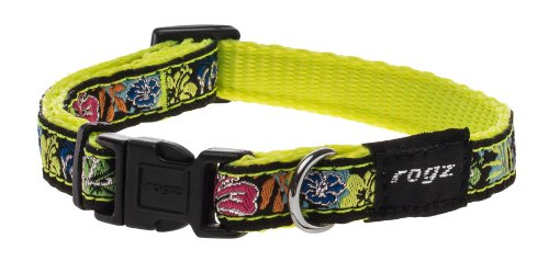 "Rogz Fancy Dress Small 3/8"" Jellybean Side-Release Fashion Dog Collar, Dayglo Floral Design"