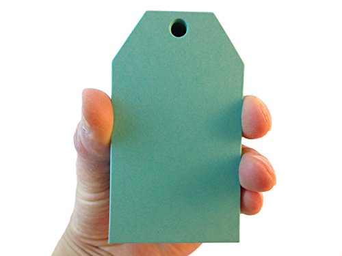 100 Count Medium Luggage Tag Style Hang Tags for Crafts, Gifts, Party Favors, Price Tags (Blu (Raspberry Tag)
