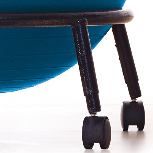 Stability Ball Office Chair Size: Gaiam Adjustable Custom-Fit Balance Ball Chair, Stability