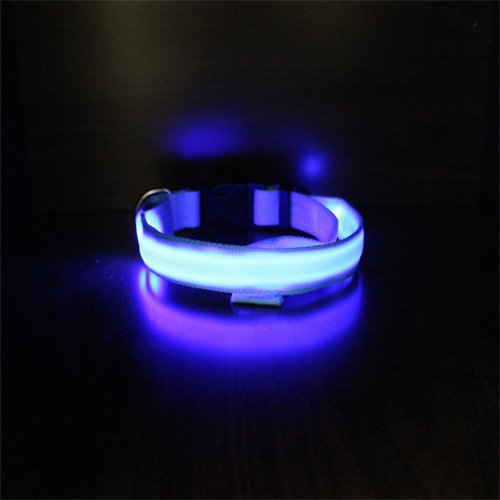 COFFLED®1pc Pet LED Light Up Dog Collar Flashing Night Safety Cat Glow in the Dark (colorful)