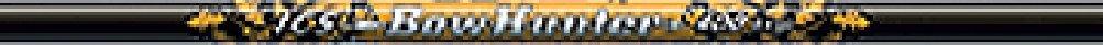Beman 1 Dozen ICS Bowhunter Shafts, 400