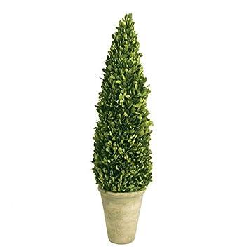 Amazon.com - Boxwood Cone Topiary in Pot II - Artificial Topiaries