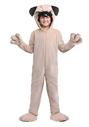 How to buy the best pug costume for boys?