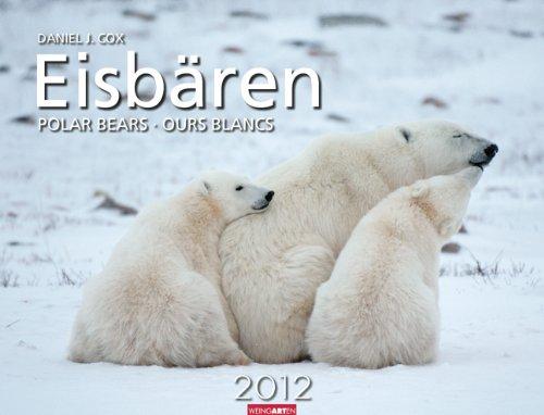 Eisbären 2012