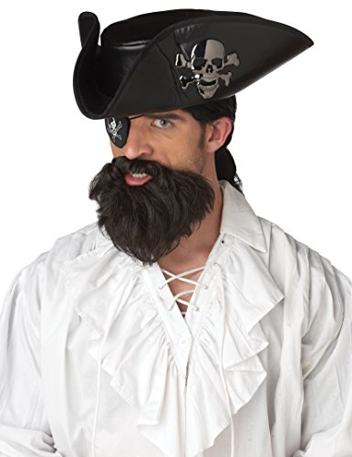 California Costumes The Captain Beard, Dark Brown, One Size Costume (Pirate Captain Beard)