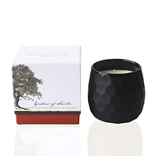 Botanique Gardens of Seville | Luxury Scented Candle | 16 oz Coconut Soy Blend | Matte Black Art Glass