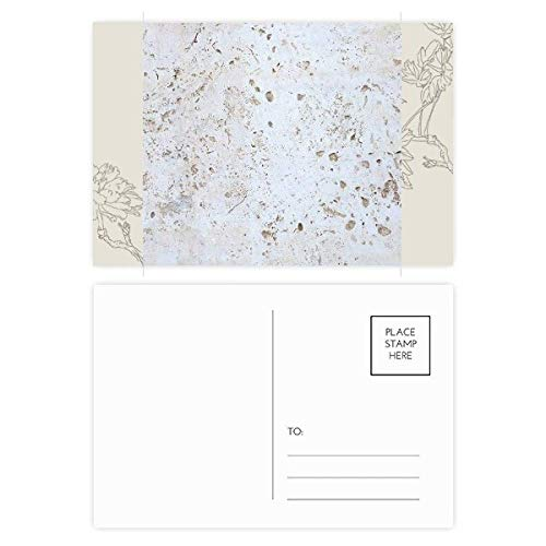 White Wall Rough Surface Texture Flower Postcard Set Thanks Card Mailing Side 20pcs by DIYthinker