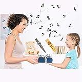 SUNYIN Wooden&Metal Kazoo,Beautiful Gift Box for