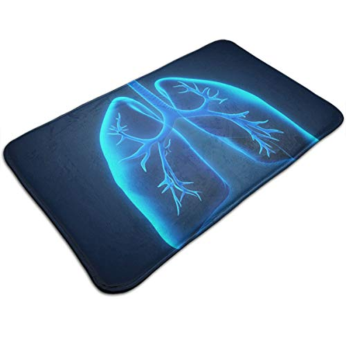 Homlife Fashion Doormat Entrance Floor Rug Blue Medicine Human Organ Non-Slip Flannel Indoor Mat for Bathroom Kitchen Home Decorative 80x50CM ()