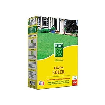 BHS Gazon soleil - Boîte de 1 kg: Amazon.es: Jardín