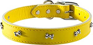 OmniPet Signature Leather Dog Collar with Bone Ornaments, Yellow, 16""