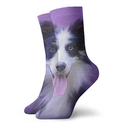 BINGZHAO Beautiful Border Collie Puppy Casual Crew Socks,Thin Socks Short Ankle for Outdoor,Running,Athletic,Travel ()