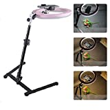 GFYWZ Selfie Ring Light with Cell Phone Holder Stand, Live Broadcast Stand 3-Level Brightness Selfie Light for Live Stream, Makeup, Video Chat, Photography