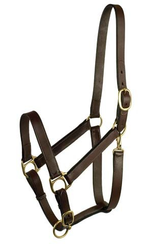 Leather Horse Halter - GATSBY LEATHER COMPANY 283541 Leather Halter Havanna Brown, Horse