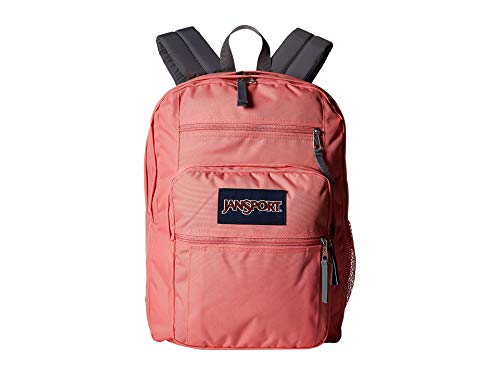 JanSport Unisex Big Student Strawberry Pink One Size
